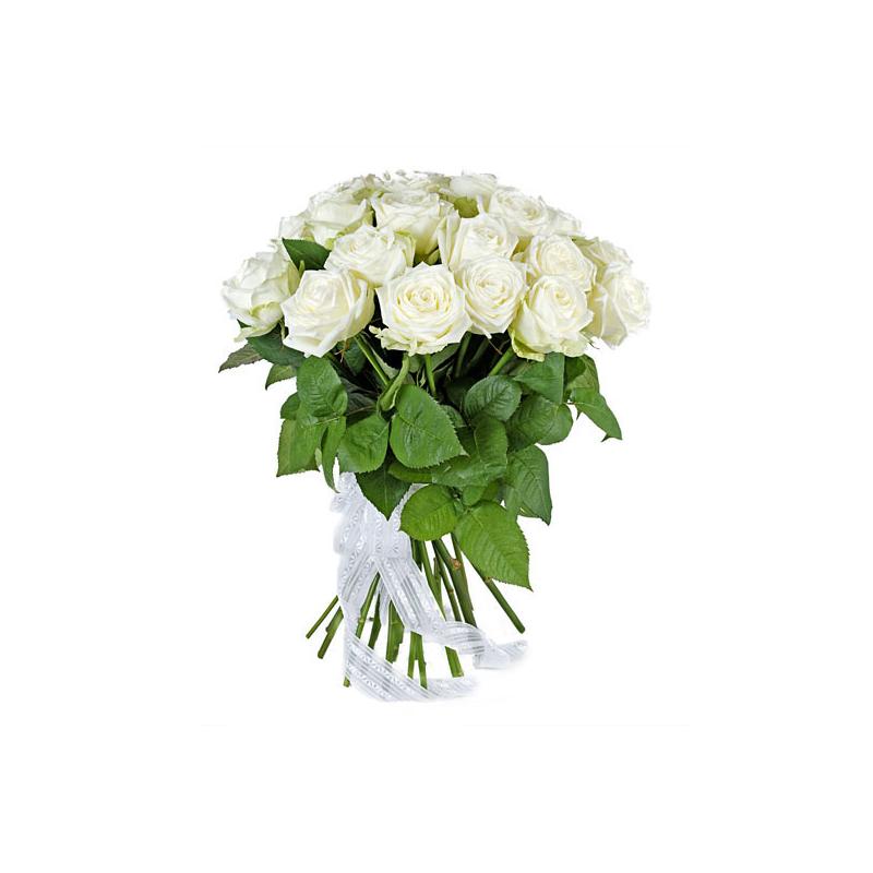 Картинки белые розы букет, днем авиации